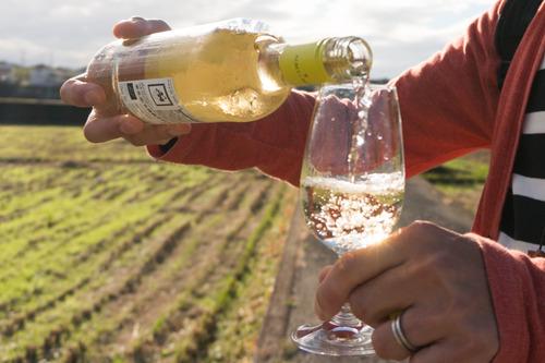 村野ワイン-22