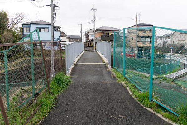 津田-1803202