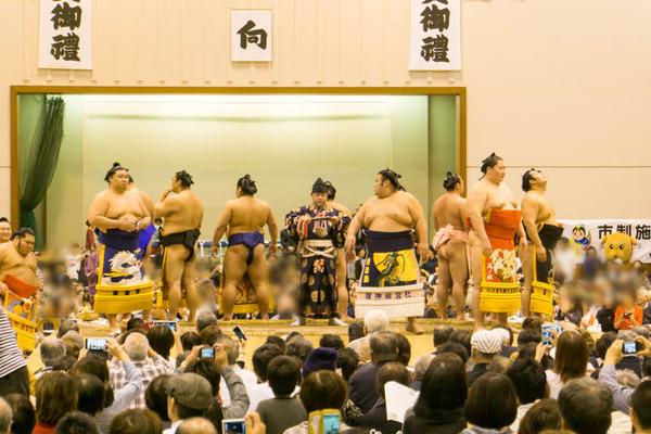 大相撲-17102013