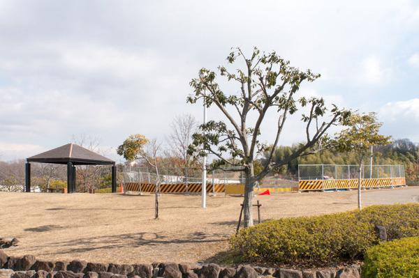 20180205くにみの丘公園-5