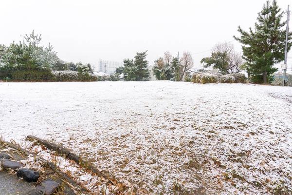雪2101124