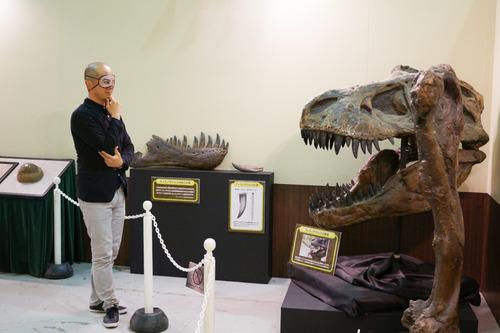 ひらパー恐竜大冒険-6