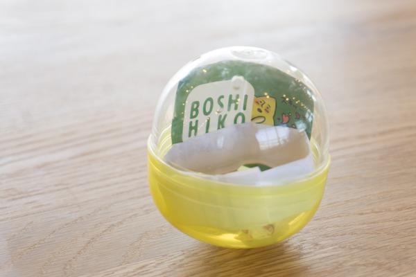 boshihiko