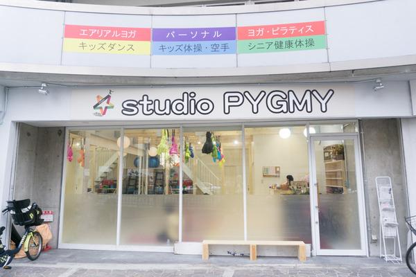 PYGMY-84