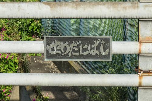 責谷川-14081922