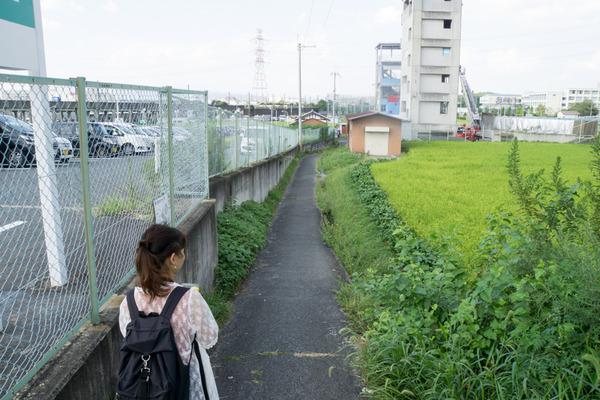 津田北町-1609097