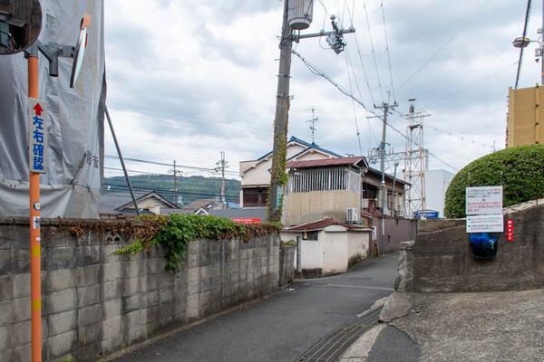 橋本-2006227