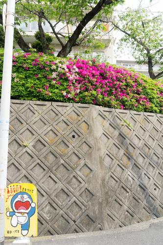 つつつー枚方ハイツ-15042801