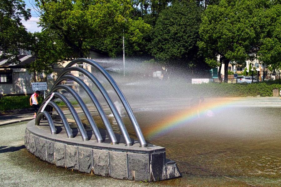 中の池公園