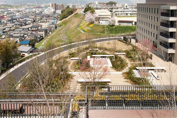 関西外大中庭-18032923