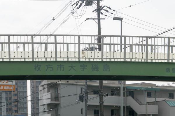 歩道橋-17113013