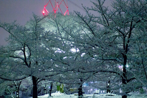 雪の正月-22