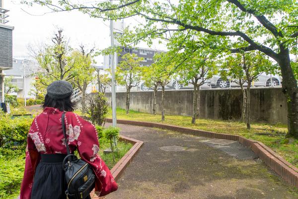 菊丘南公園-2004172