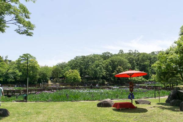 山田池公園-1805255