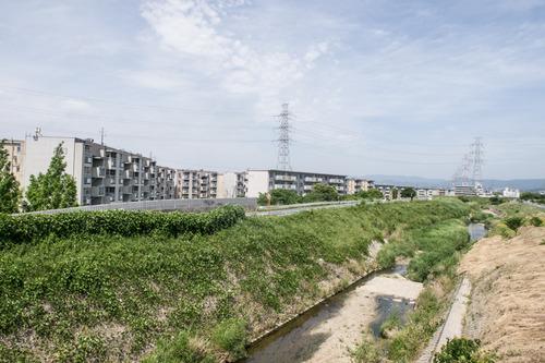 カンソ-田口-1406039