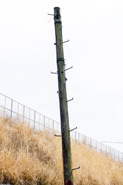 電柱2-1703141