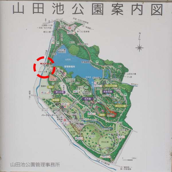 翡翠橋-2