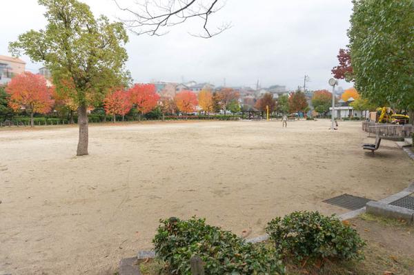 すい公園-16112064
