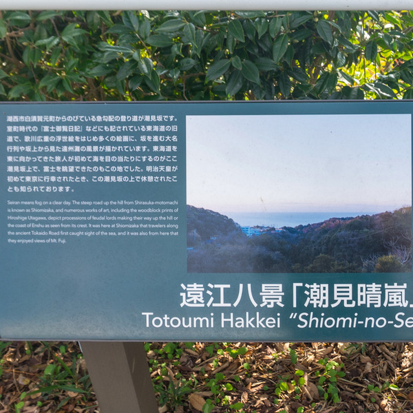 東海道8日目-19112516