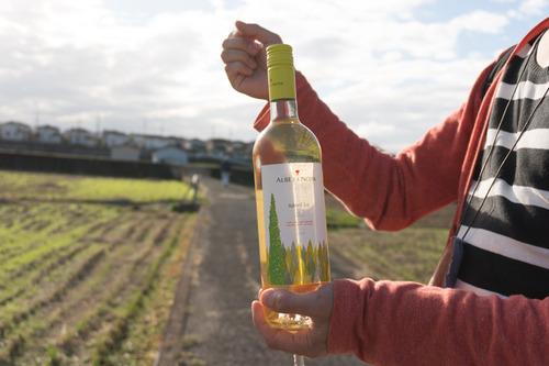 村野ワイン-17