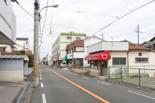 でんちゃん-1501133
