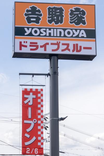 吉野家-16020602