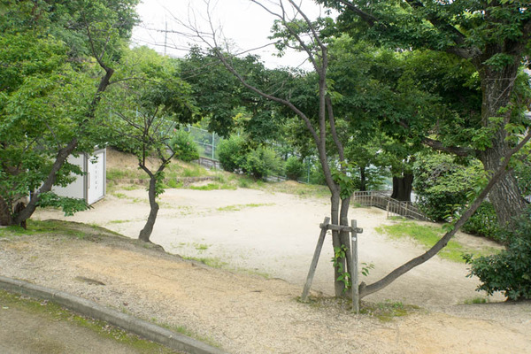 公園-19072515