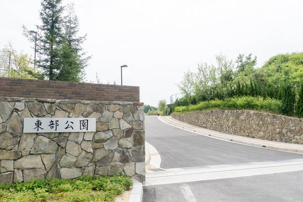 東部公園-1705123