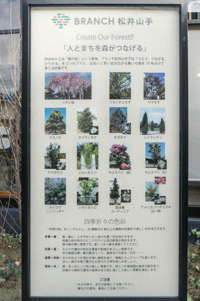 ブランチ松井山手-18121323