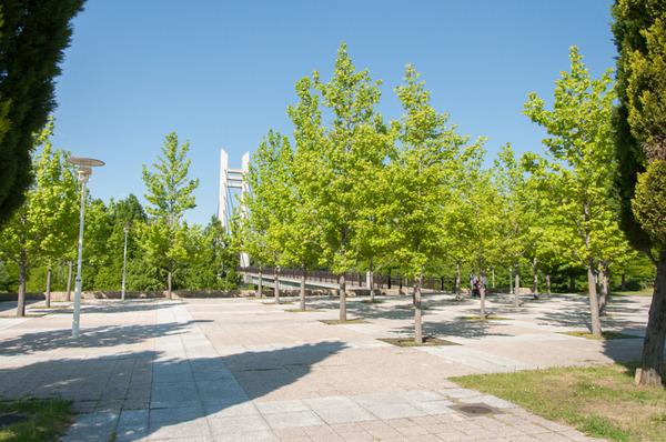 山田池公園-101