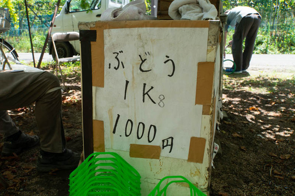 ぶどう-18073010