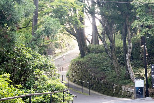 比叡山-227