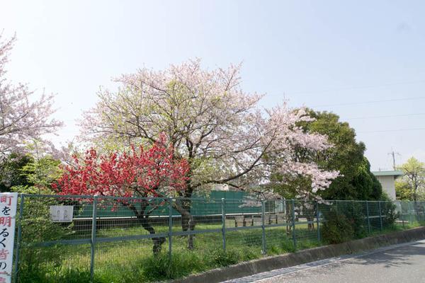 小倉町-1804031