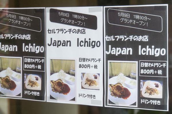 ジャパンイチゴ-1605108