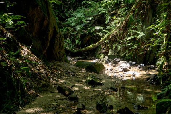 虚空蔵谷の滝-1707263