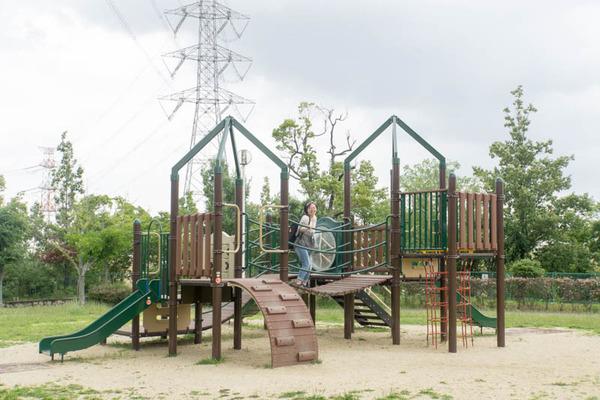 くにみの丘公園-18062810