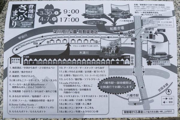 背桜-1903306