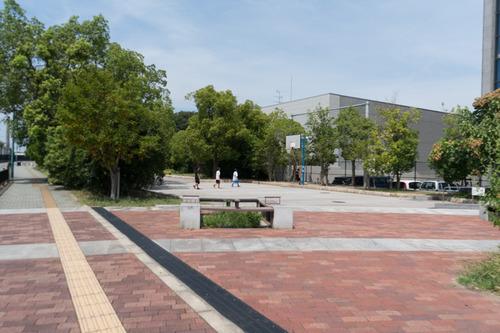 kurumaduka-park-64