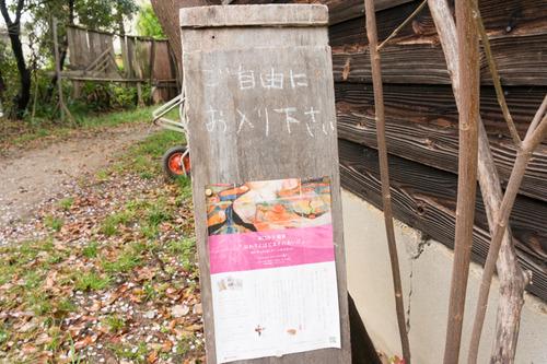 桜花祭2015-69