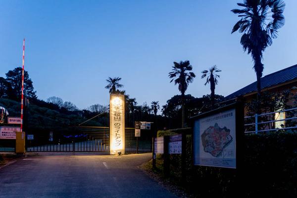 植物園-1704012