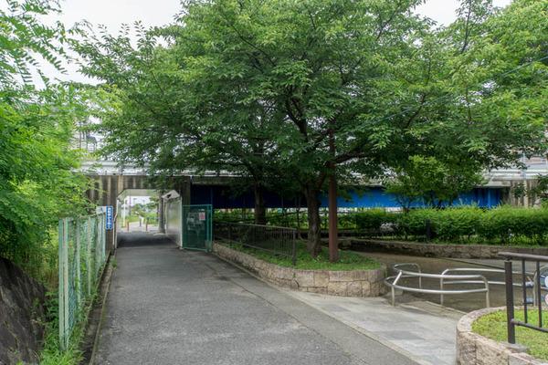 伊加賀-1606293
