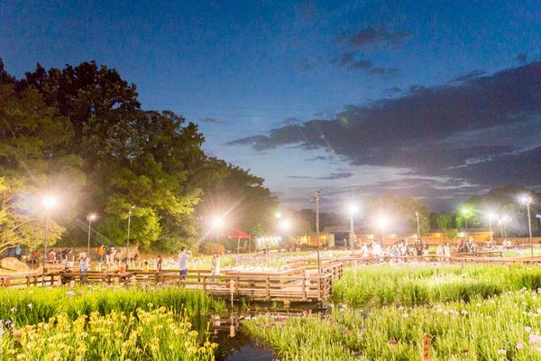 山田池公園-1706039
