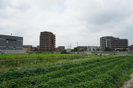 中村病院20120724101503
