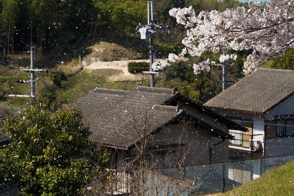 武生田公園-20040710