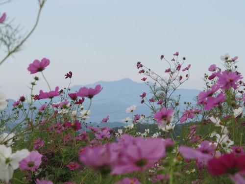 141010山