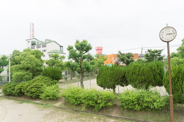車谷公園(20180611)-8