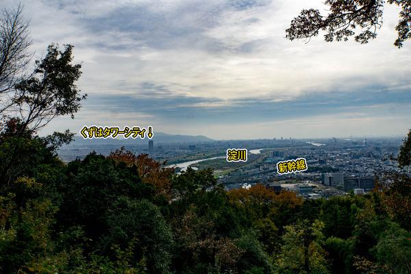 全景-1611301
