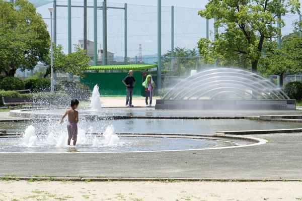 中の池公園-1707262