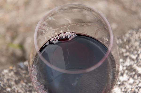 長尾ワイン後編-68