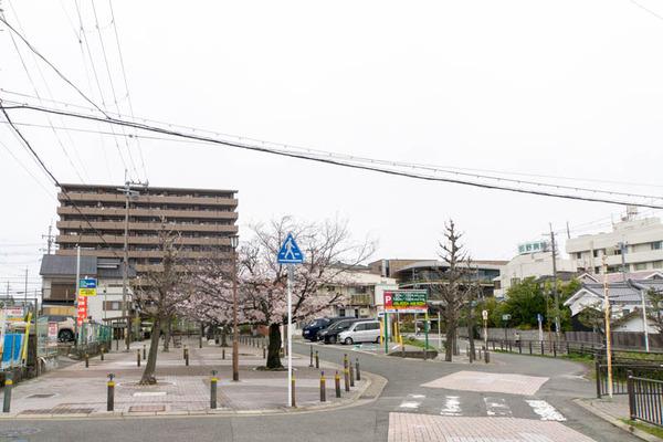 はぴんす-2003305